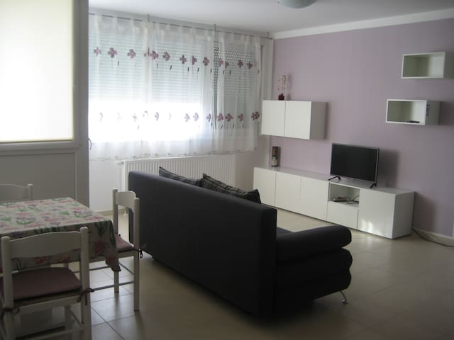 Lovely apartment in quite zone near Rijeka center - Rijeka - Apartment