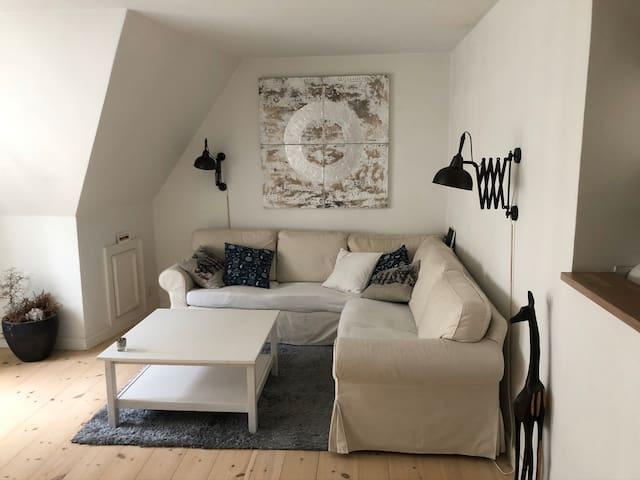 Great Apartment in the heart of Copenhagen