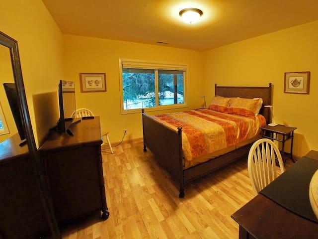 Master bedroom - desk, dresser, TV, mirror