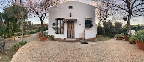Casa rural em Estepa (Sevilha), com piscina