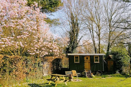 Maggie's Hut Fittleworth, get away from it all!