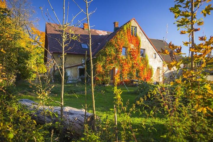 U Kyslika - room #1 - simple life, Garden of Flow