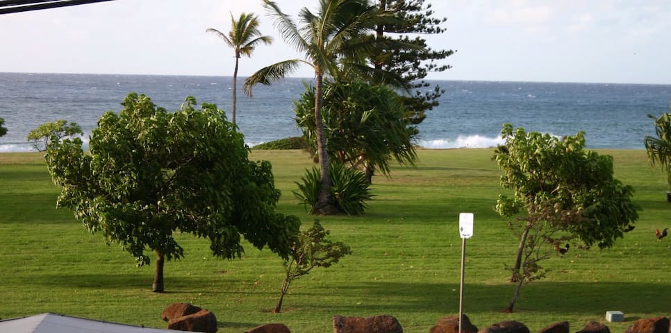 White-water views and steps from the Poipu's sand. - Koloa - House