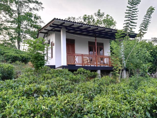 Organic Garden - Matugama - Villa
