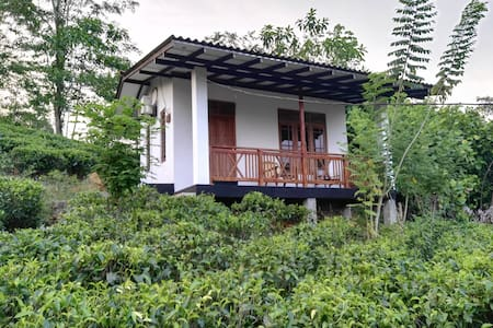 Organic Garden - Matugama