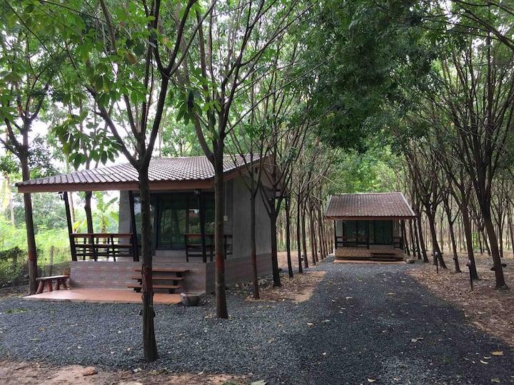 Pongprakhun Home