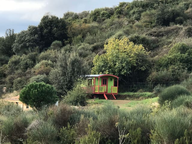 1 Tiny house/bohemian wagon/roulotte with eco-pool