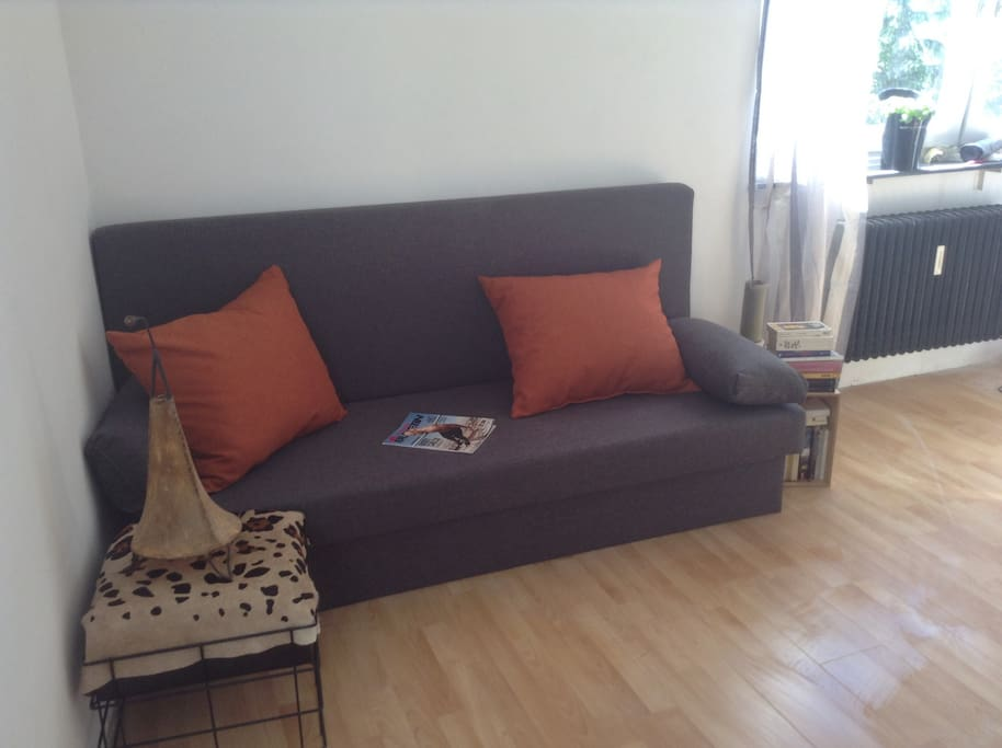 One ( of two) extendable sofa beds