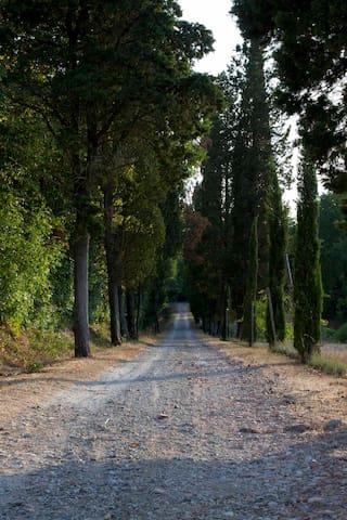 Villa Nardini - Masia Toscana