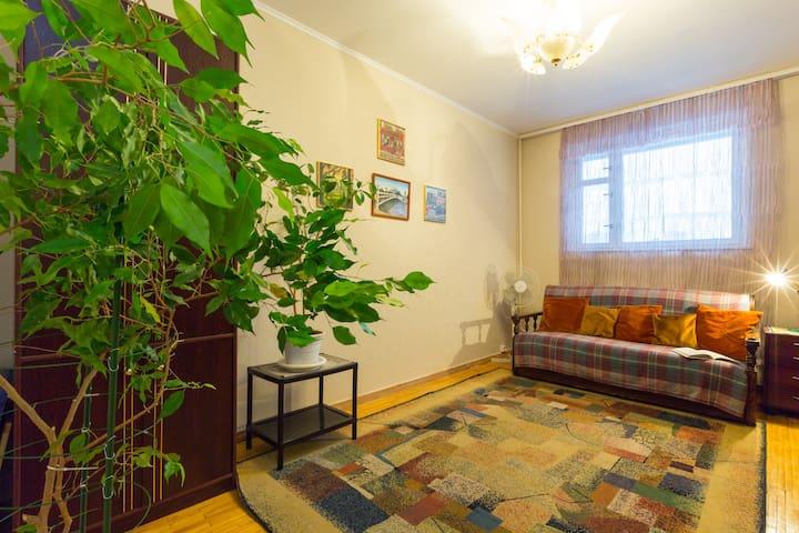 One Bedroom Flat Sleeps 4 in Moscow - Москва - Appartamento