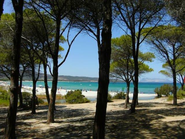 CASA GIONNY-A trilocale a pochi minuti dal mare..