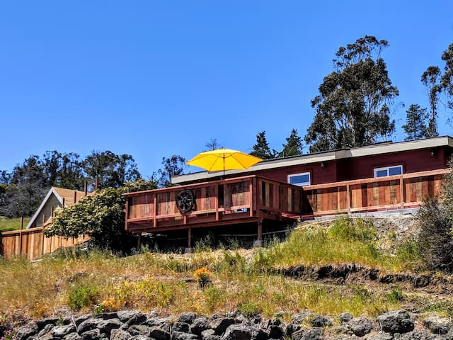Cozy Cottage on 2 Private Acres in Cambria