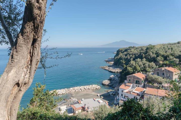 Near the Sea Sorrento - Maison del Mare