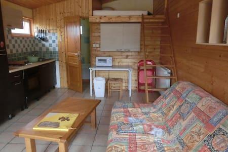 studio de 25 m2 - Saint-Lager-Bressac - Leilighet