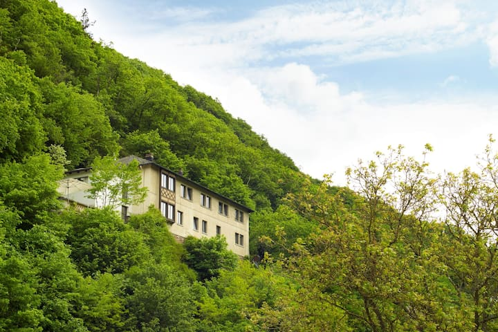 Luxe groepsaccommodatie Haus am Berg Bad Bertrich