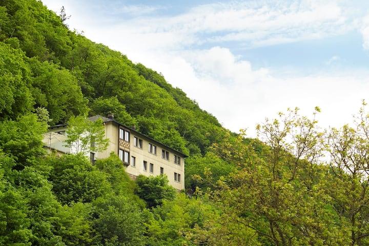 Luxe groepsaccommodatie Haus am Berg Bad Bertrich