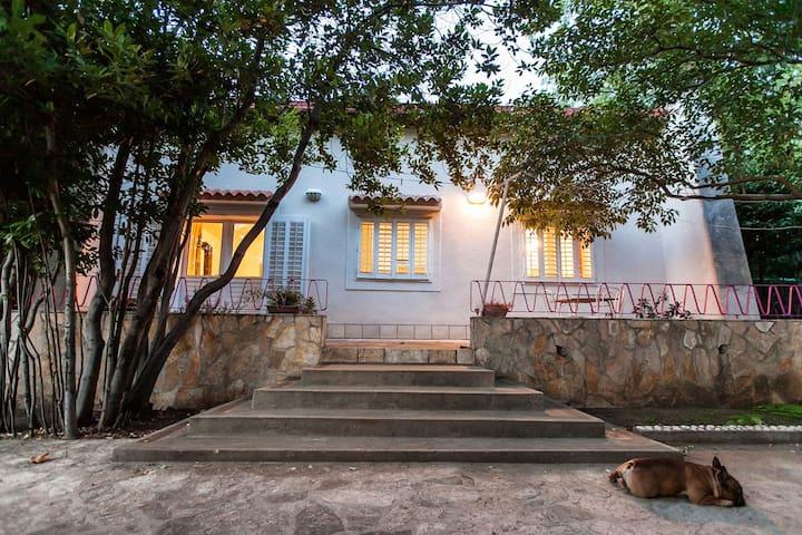 villa Mici - Novi Vinodolski - Villa