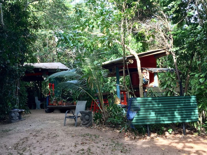Calo Jungle Camp