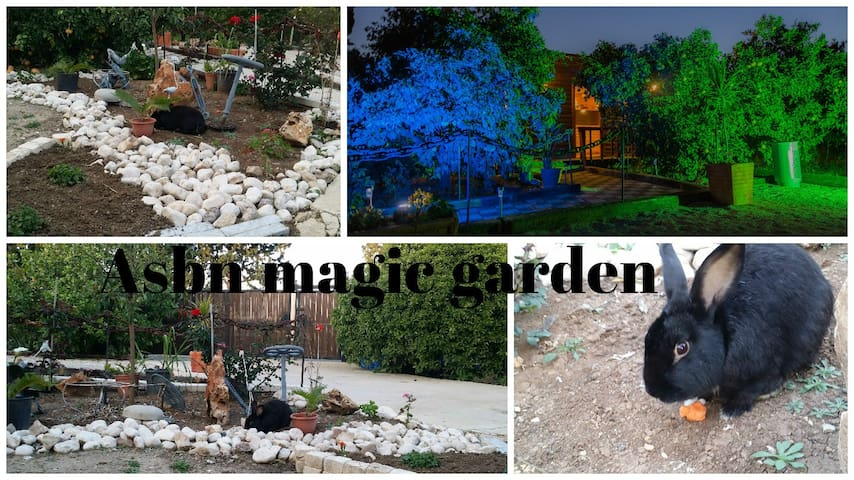 Asbn Magic Garden - Acre - Ev