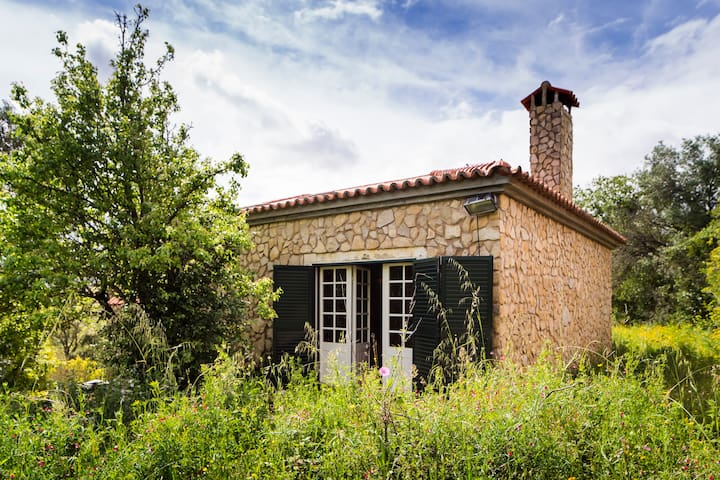 Enjoy the nature-20mins from Lisbon - Arruda dos Vinhos - House