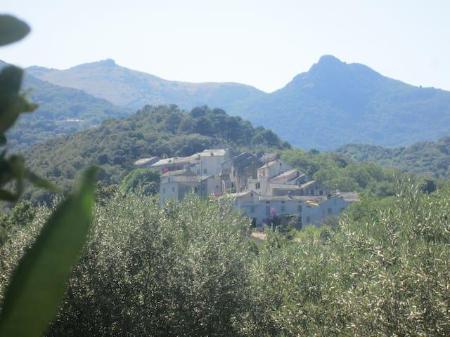 petite maison entre mer et montagne - Luri - Casa