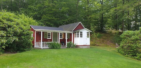 Newly renovated cabin with pool access