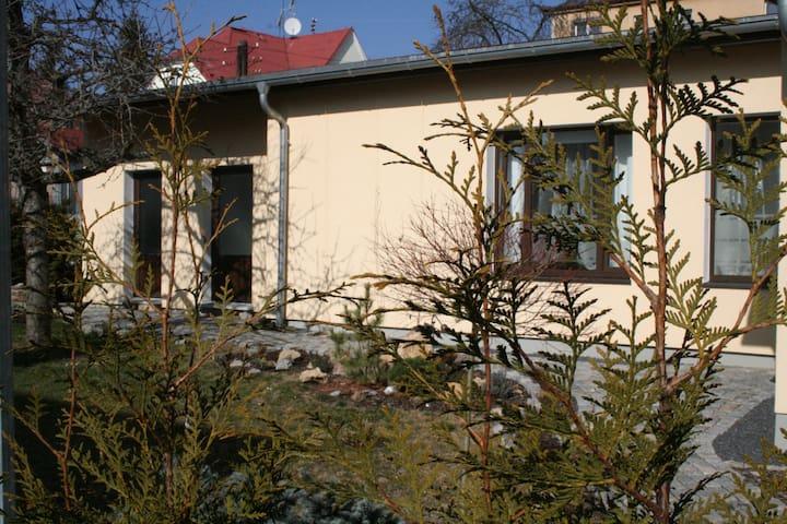 Апартаменты в вилловой части города - Mariánské Lázně