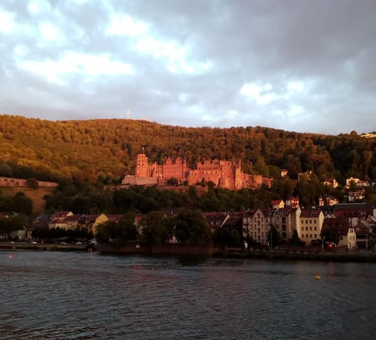 Heidelberg Wohnung