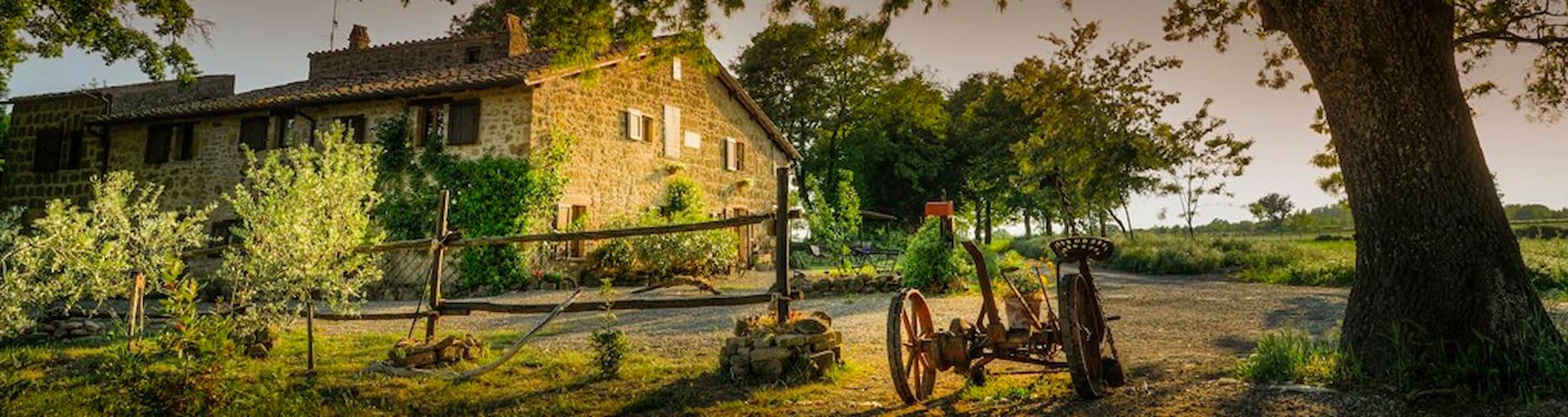 Tuscany Organic farm Sant'Egle - Sorano - House