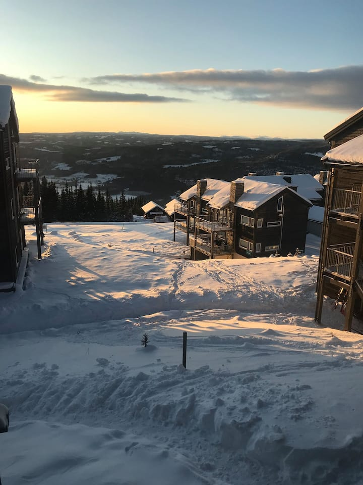 High standard ski in/out apt. on top of Hafjell