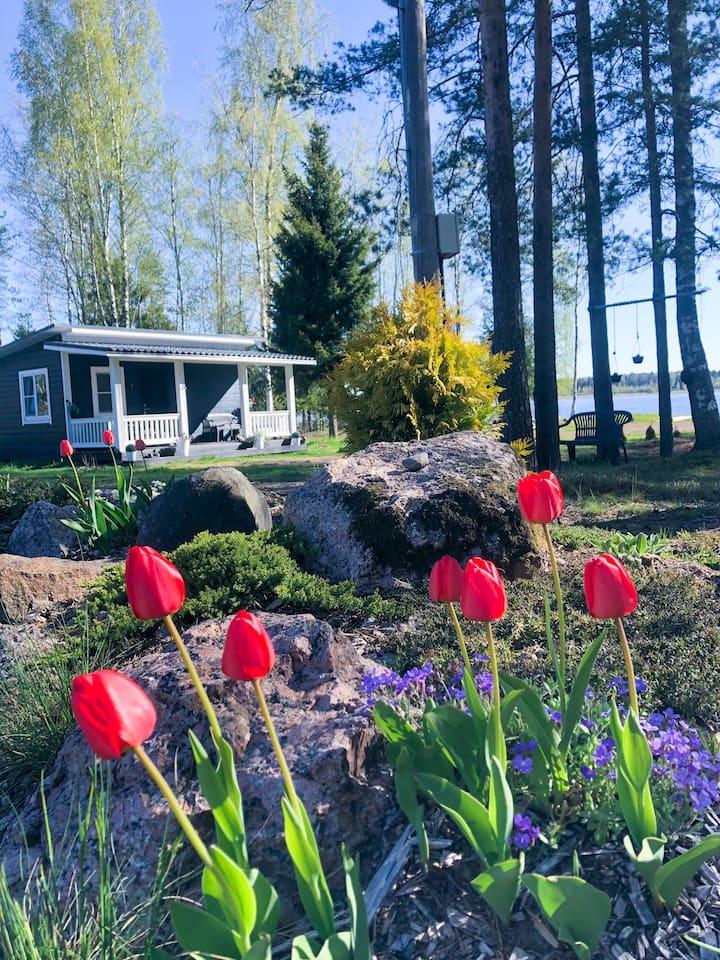 Милый домик у озера