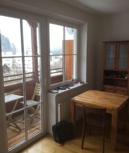 zentrumsnahe, ruhige Kleinwohnung - Bad Aussee - Lägenhet