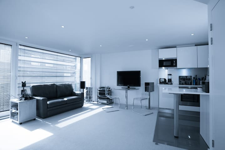 Stylish, Spacious Studio in Islington - sleeps 4