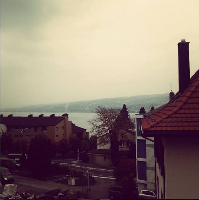 horgen chat rooms Expedia price guarantee on 2 horgen hotels saves you money top 10 hotels in horgen rooms are spotless clean although essential.