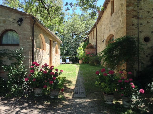 Charming apartments near Siena - Castelnuovo Berardenga - อพาร์ทเมนท์