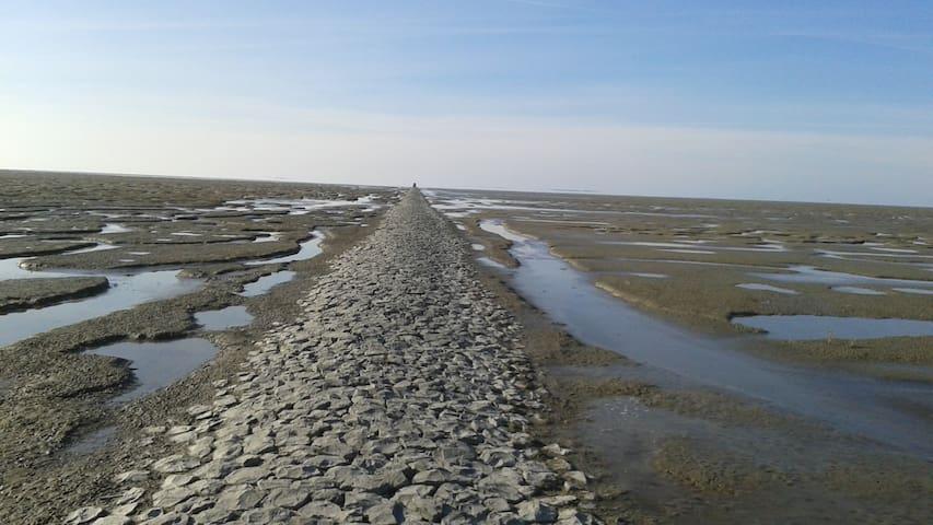 Dijkhuis Noord Friesland