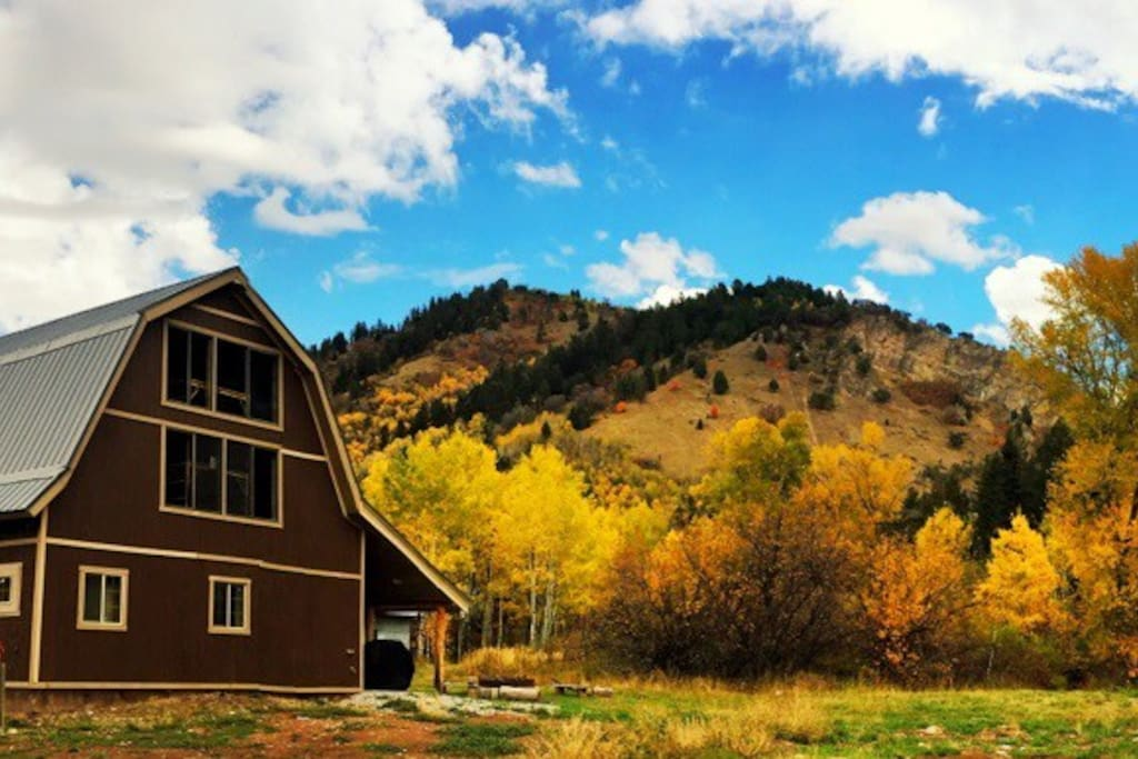 Fall colors. (guest contributed - thanks!)