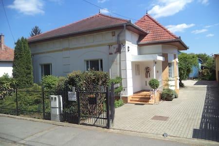 Ágnes Apartman-Otthonos,gyerekbarát - Hódmezővásárhely - Rumah