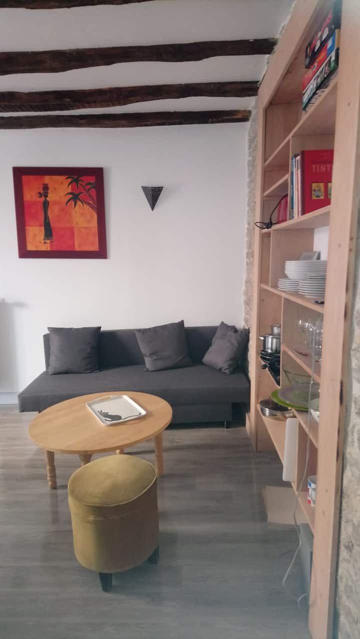 Charmant appartement au cœur de Langres