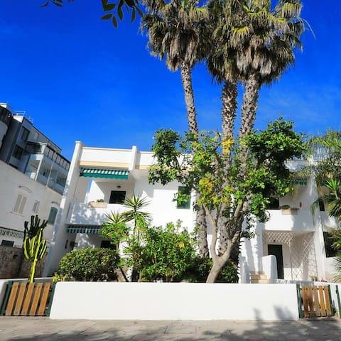 Appartamenti a 50 mt dal mare - Baia Verde - Appartement