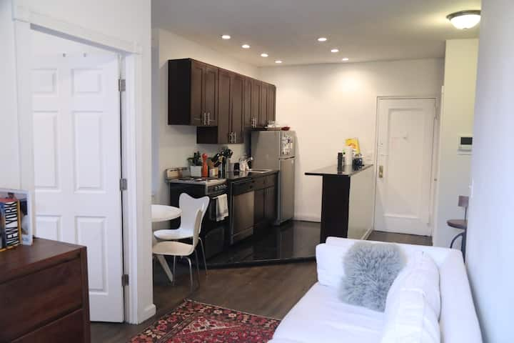 Large shared apartment in Alphabet City