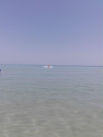 Un apparemment front de mer à louer