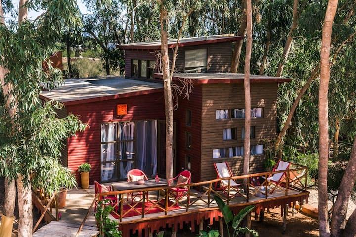 Riad Baoussala - Charmante Cabane sous les arbres