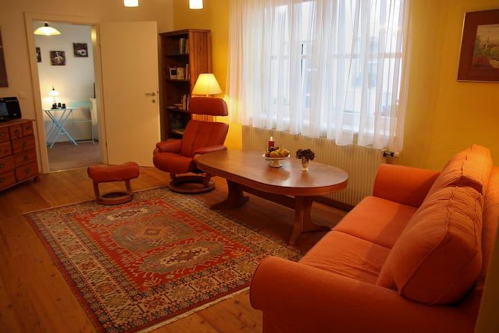 Altes Winzerhaus im Zentrum Badens - Baden - Wohnung