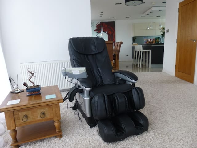 The amazing massage chair