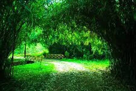 Private room in between greenery - Kunnathidavaka