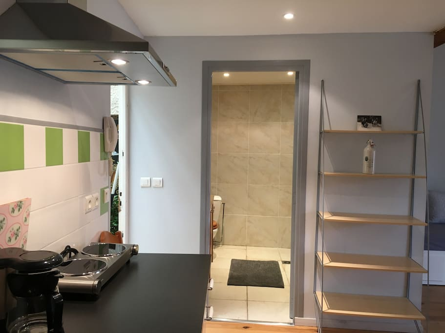Entrance and bathroom, kitchenette