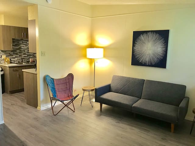 Walkable South Austin, Brand New Apartment
