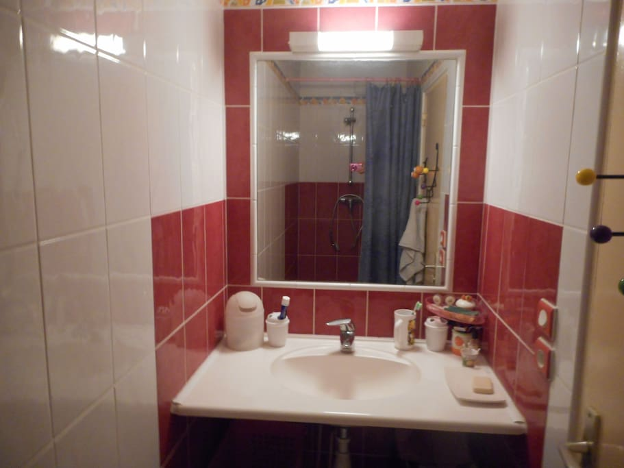 salle de bain avec lavabo et douche séparée des toilettes