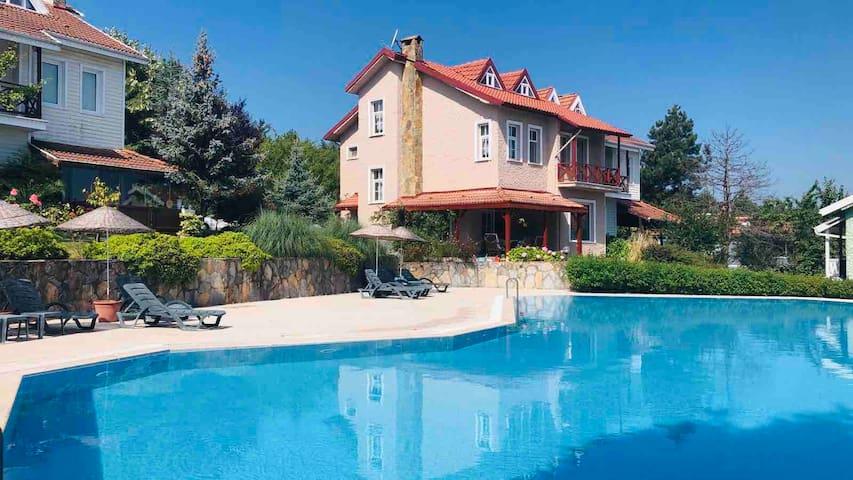 Sapanca bölgesinde nefis peyzajlı , havuzlu villa